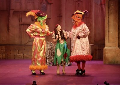 Cinderella with Ugly Sisters