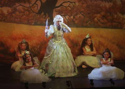 Fairy Godmother and her Fairies